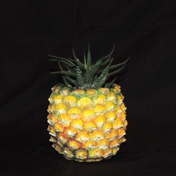 Pineapple Planter by Ethereal-Beings