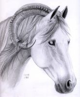 Solven Horse by ManiaAdun