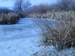 Stock. Frozen pond by taggathias