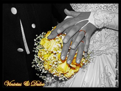 Vinicius and Dulce - The Marriage by SpyroDrag