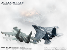 Ace Combat 6 BLife Team by RaigaSpiffy