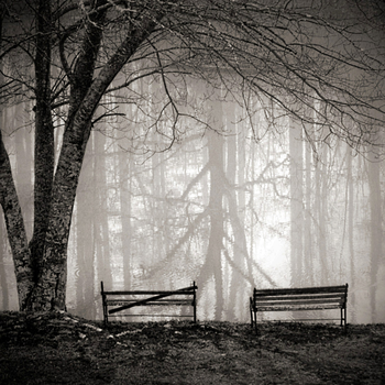 Faded Intensity.Forgotten Life by pagit