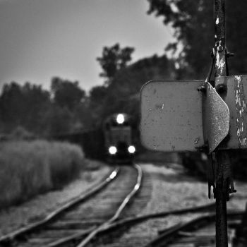 The Signals Flash by toddyost