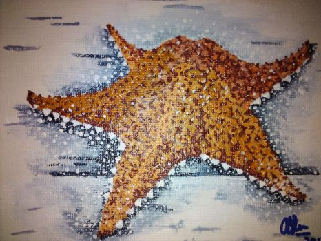Starfish in Acrylic by caymanian15