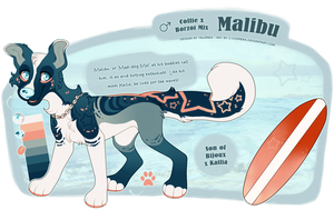 OC: Malibu by c-Chimera