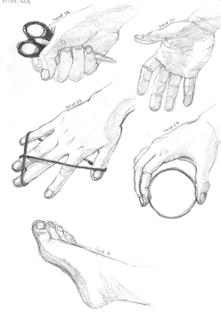 Hands 31 - 34 | Foot 1 by monique-conway