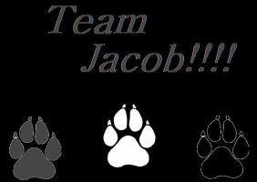 Team Jacob by madly-in-love