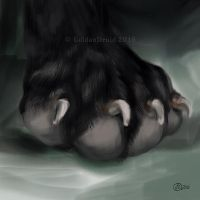 Paw with Claws - SpeedPaint by GoldenDruid