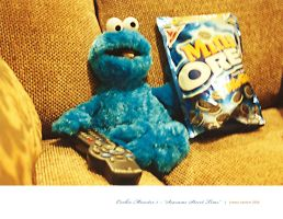 Cookie Monster I by breezy421