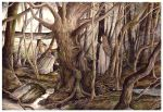 Searching Fangorn Forest by peet