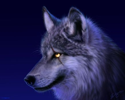 Wolf wallpaper by Deligaris