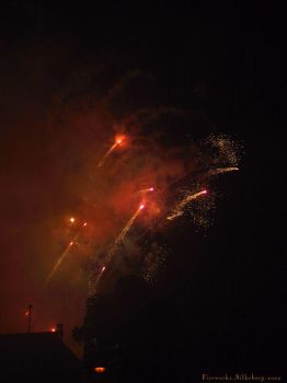 Fireworks I by transfusion
