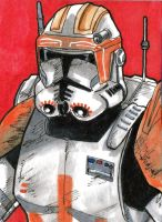 Commander Cody 7 by ThanhBui714