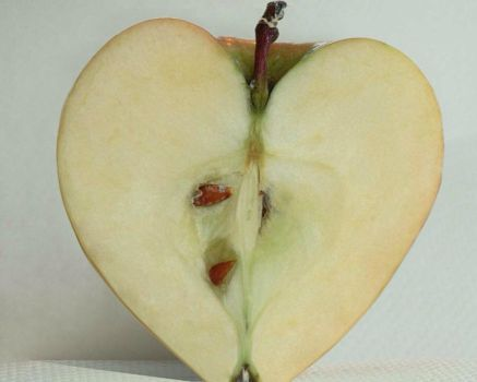Apple Heart by lilxtreme