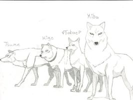 wolfs by Wolf4life