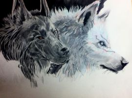 Twin Wolves by poisonnova