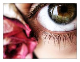 rose eye by The96th