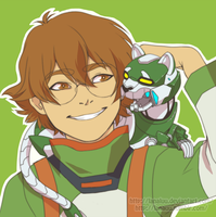 Pidge's Lion by Lanaluu