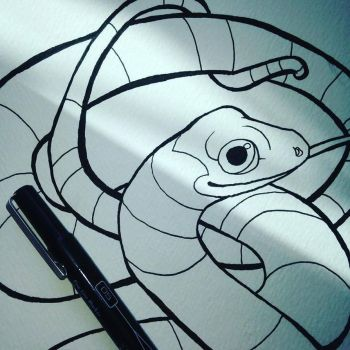 Snake Inks for Colouring Book! by CharReed