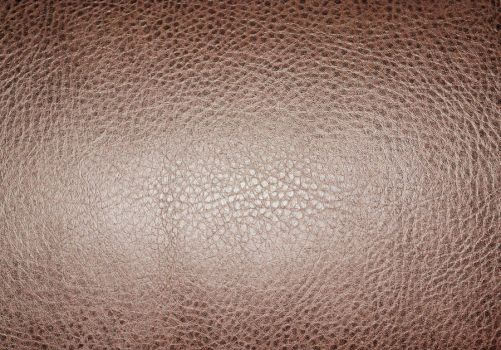 Brown Cracked Leather by HollyDGF