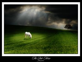 The Pale Horse by JulianGraves