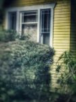 This Old House by creativemikey