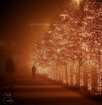 lights row by Andythesith