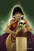 Vampirella 21 Cover Colors by FabianoNeves