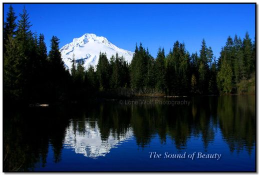 The Sound of Beauty by LoneWolfPhotography