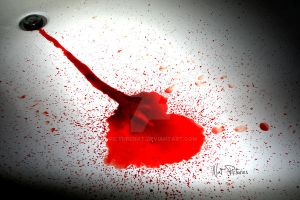 Bloody Heart by picturenat