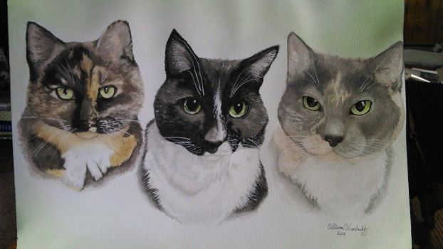 3 Cats portrait by Featherd9TailsWolf