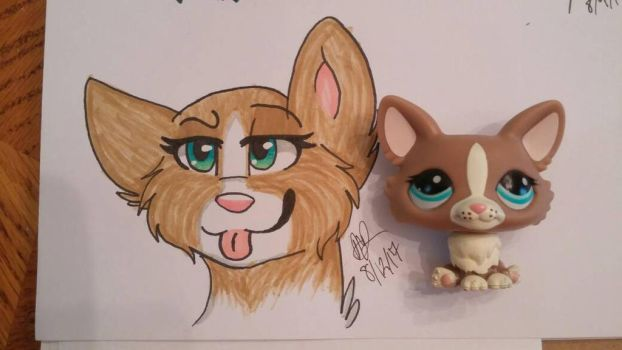 Lps drawing by wolfymaples