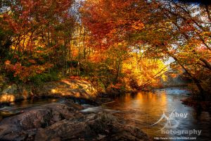 Rev - HDR Autumn River by Nebey