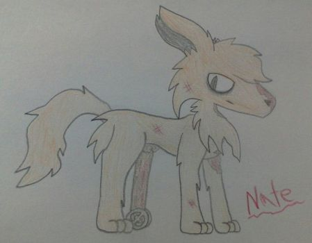 Nate (redesign) by Nateevee