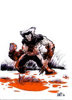 Wolverine_02 by BLACKBULLSEYE