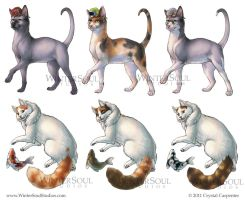 Breeds - Cats and Companions by soulofwinter