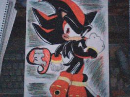 Shadow The Hedgehog by Elextrena