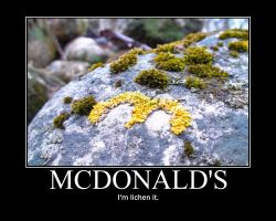 McDonald's by chibudgielvr