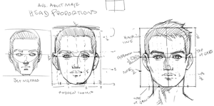 Head Proportions Male Front View by THEJETTYJETSHOW