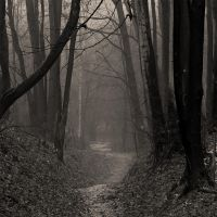 You walk a lonely road by firepaved