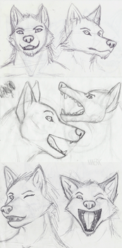 other sketches by Virtual-wolf