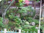 Japanese Garden by Trisaw1