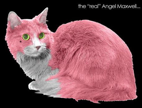 Angel in Photorealism by angel-maxwell