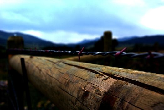 Barbed Wire (2) by BookWeaver