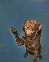 Labrador acrylic painting by AndyFlash0f