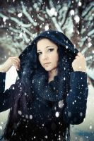 February snow by 13-Melissa-Salvatore