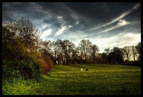 A Little Piece Of Nature II by Nadyes